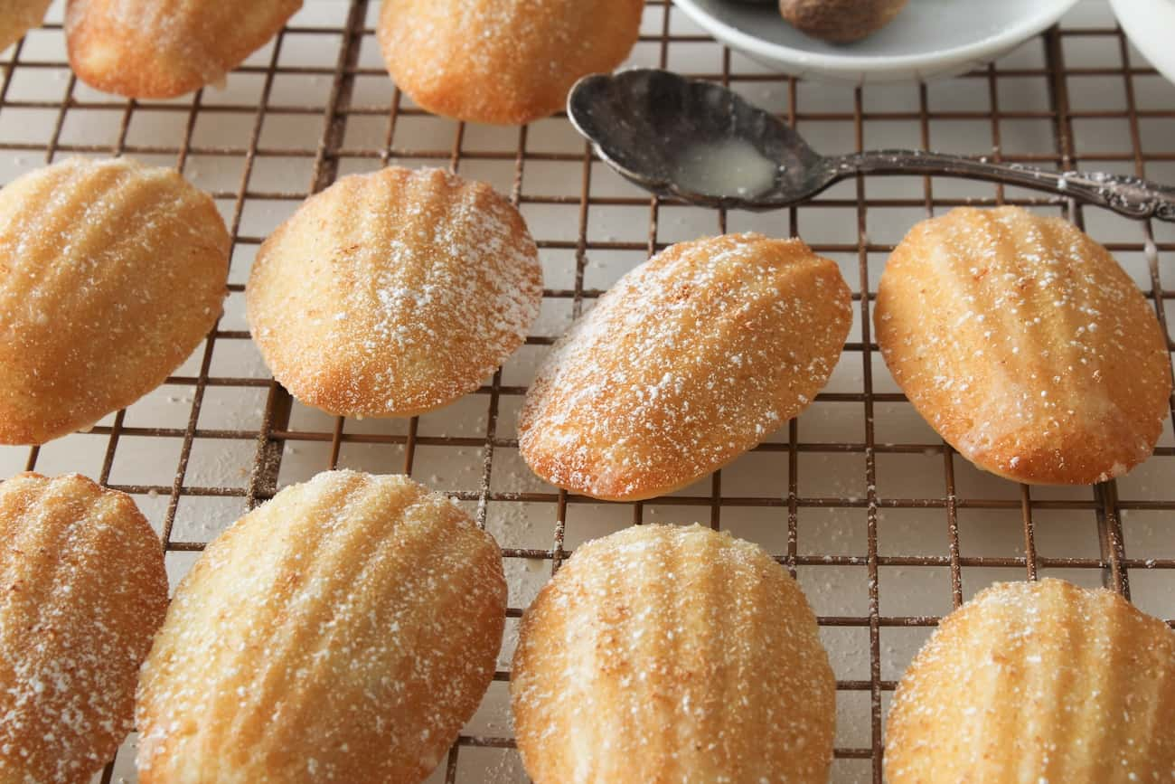 eggnog madeleines with powdered sugar